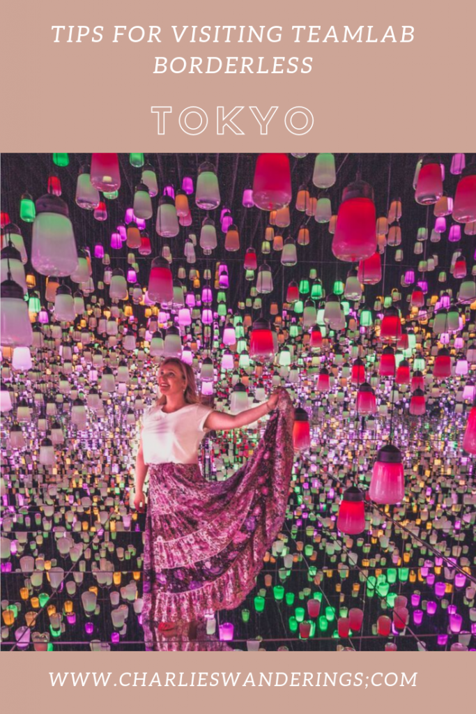How to take photos at teamLab Borderless in Japan