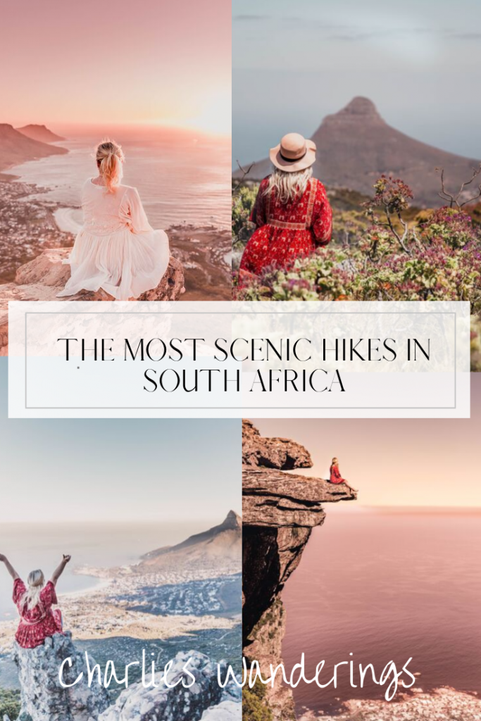 the most scenic hikes in cape town