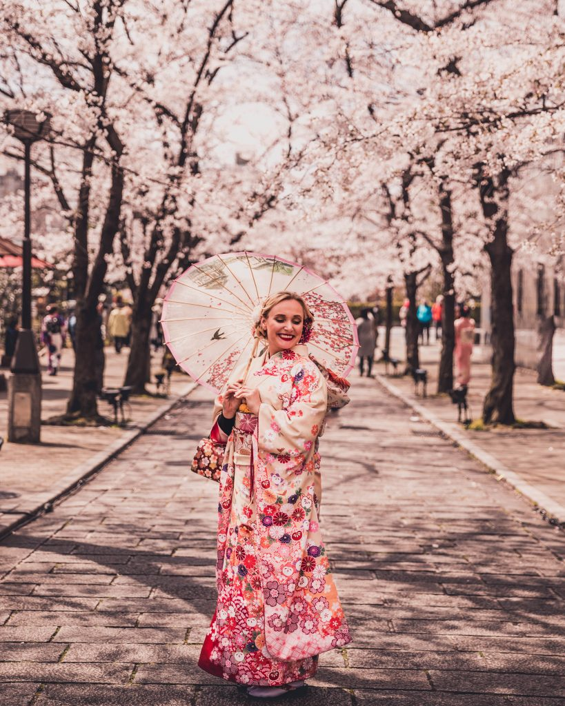 cherry blossom trees and kimono rental in Kyoto