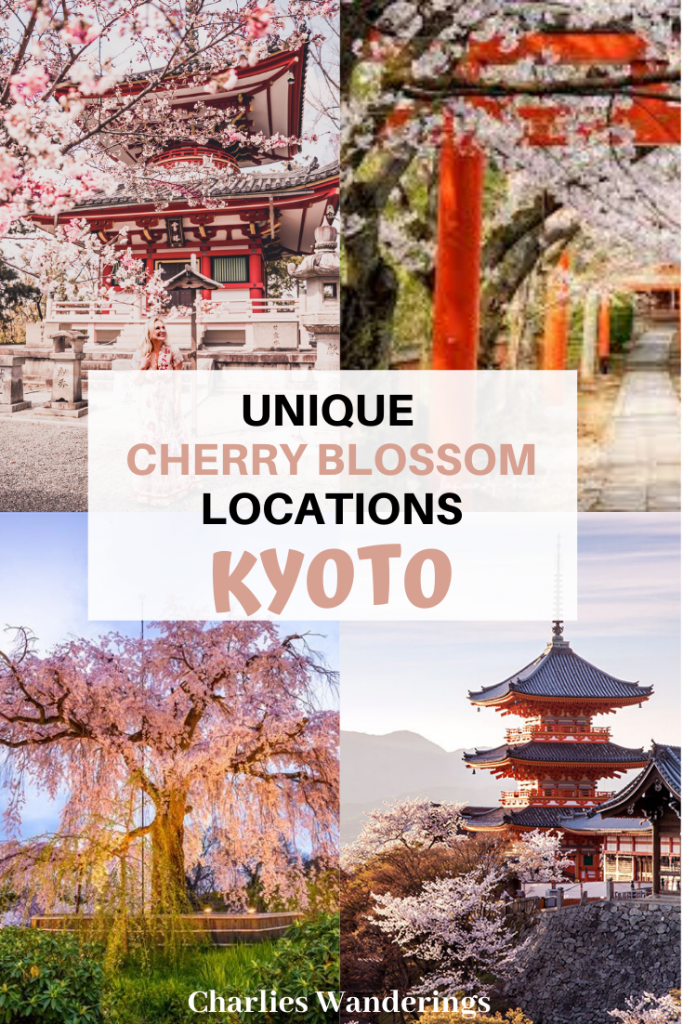 The Best Cherry Blossom Locations in Kyoto